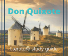 Don Quixote Literture Study Guide